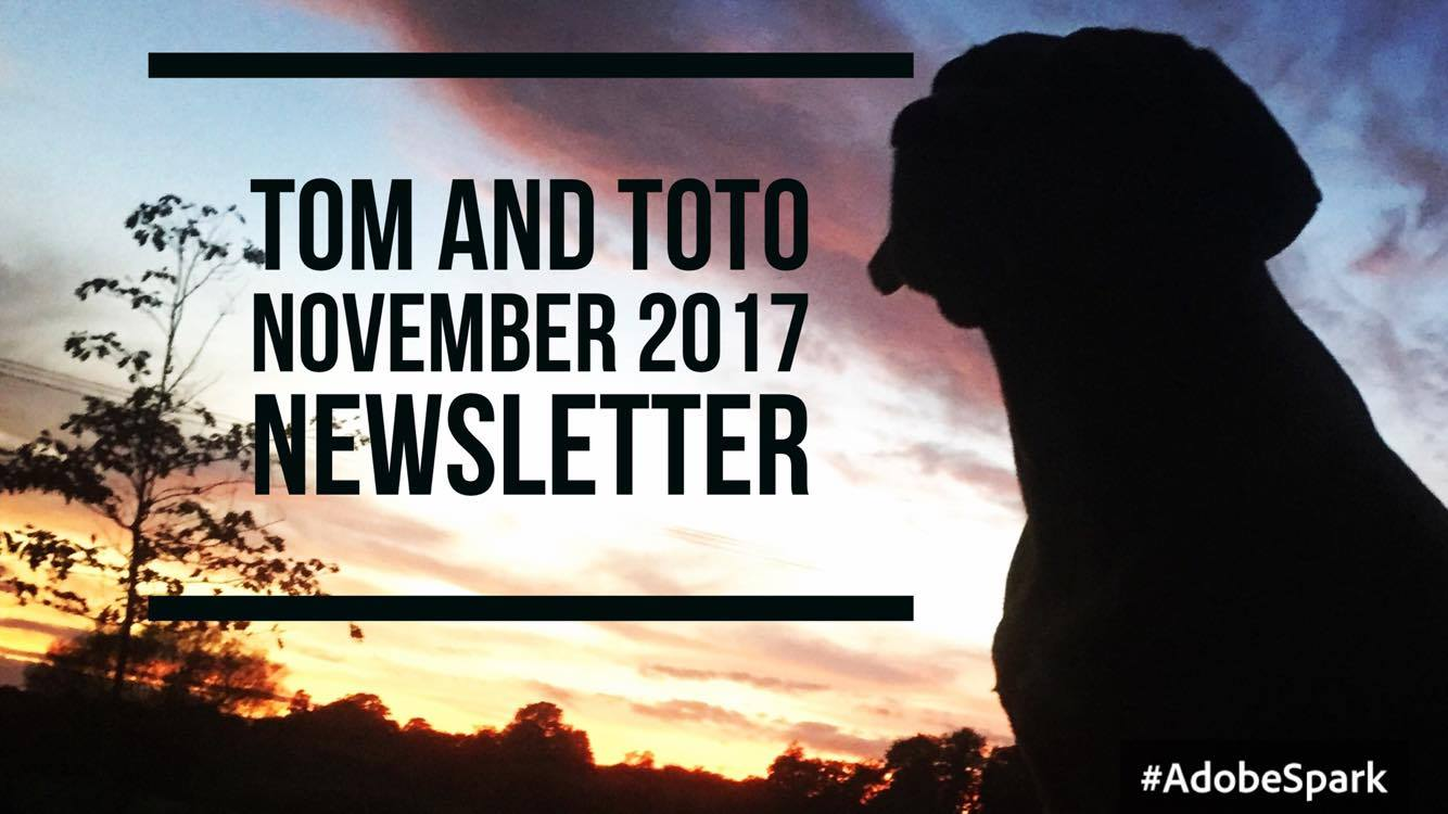 Tom and Toto November 2017 Newsletter | Tom And Toto Pet Care Ltd.